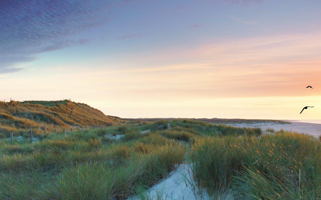 Unser Sommerkurs auf Sylt – Wind, Wellen und Wirtschaftsmediation!